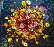 Fall Flower Mandala Stock Photography