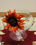 Fall flower. Orange fall flower on a glass with fall leaf under Stock Images