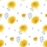 Fall flower seamless pattern. Stock Image