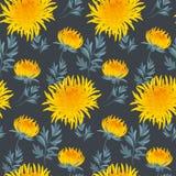 Fall flower seamless pattern. Stock Photos