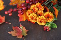 Fall flowers Royalty Free Stock Photos