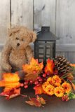 Fall flowers and teddy bear Royalty Free Stock Image