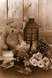 Fall flowers and teddy bear Royalty Free Stock Photography