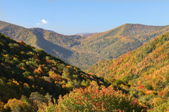 Fall foilage in the mountains. Fall leaves in the mountains with blue sky Royalty Free Stock Images