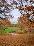 Autumn in the park, Aarhus University, Denmark. Fall foliage and orange oak leaves on the ground - a scenic view in autumn in Denmark royalty free stock photo