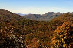 Fall Foliage. Smokey Mountain Range soaked in a warm light late in the day with a burst of Fall colors Royalty Free Stock Photo
