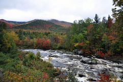 Fall Foliage in Adirondack Mountains Royalty Free Stock Images