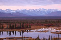 Alaska Range in Denali Royalty Free Stock Images