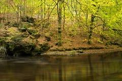 Fall foliage along river banks Stock Photography