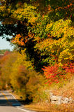 Fall foliage in Bedford, New Hampshire, USA Stock Photography