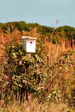 Fall Foliage and a Bird House Stock Photos