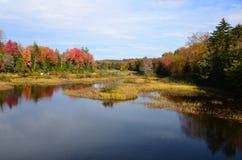 Fall foliage border a blue Adirondack pond Royalty Free Stock Images