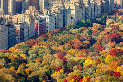 Fall foliage and Central Park West, Manhattan, New York City. Brilliant fall colors of Central Park foliage in late afternoon. Aerial view toward Central Park stock image