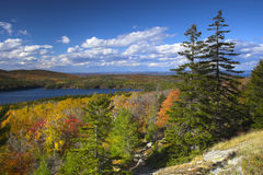 Fall foliage colors Royalty Free Stock Images