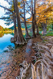 Fall foliage on the crystal clear Frio River in Texas. Royalty Free Stock Image