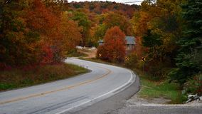 Fall foliage with curved road royalty free stock photo