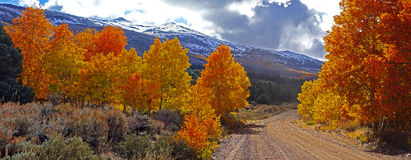 Fall Foliage at the Eastern Sierra Nevada Mountains in California. Panorama Of Fall Foliage at the Eastern Sierra Nevada Mountains in California With a Dirt Road Stock Photo