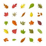 Fall Foliage Flat Icons vector illustration