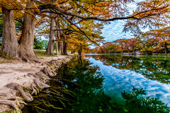 Fall Foliage at Garner State Park, Texas Royalty Free Stock Photography