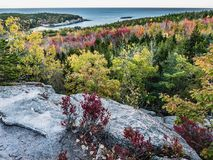 Fall Foliage and Granite Overhang with View of Great Head,, Mount Desert Island. The forest of Acadia National Park, ablaze with fall colors, is seen from a Royalty Free Stock Photos