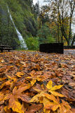 Fall Foliage at Horsetail Falls stock images