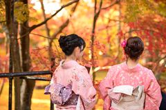 Fall Foliage in Kyoto Royalty Free Stock Image