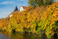 Fall Foliage at La Frette sur Seine Stock Photo