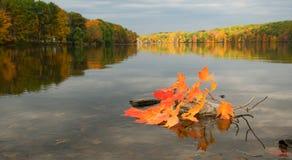 Fall foliage on lake Stock Image