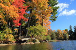 Fall Foliage in Lake Laurel, Berkshire, Massachusetts Stock Image