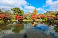 Fall foliage at Maruyama Park Stock Photography