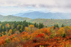 Fall Foliage and Mountains royalty free stock photo