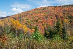 Fall Foliage in the Mountains of West Virginia Stock Photography