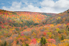 Fall Foliage in the Mountains of West Virginia Stock Photos