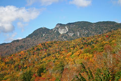Fall Foliage on the Mountainside. Colorful autumn foliage covers the mountainside below granite cliffs Royalty Free Stock Photography