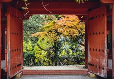Fall Foliage in Nara, Japan Stock Photo