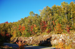 Fall Foliage in New England. Fall Foliage in Kancamagus Highway in White Mountain National Forest, New Hampshire, USA Stock Image