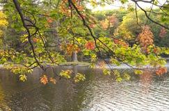 Fall Foliage New England Stock Photography