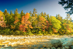 Fall foliage of New England, USA.  Stock Images