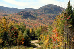 Fall Foliage in New Hampshire Royalty Free Stock Photo