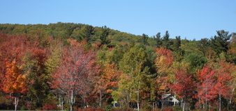 Fall Foliage in New Hampshire Royalty Free Stock Images