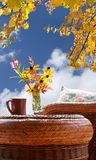 Fall foliage by patio Stock Images