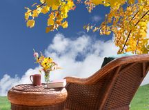 Fall foliage by patio Royalty Free Stock Photos