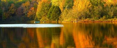 Fall foliage reflected on lake. Idyllic fall foliage scene with reflections on lake with a wisp of wind ripples Royalty Free Stock Photo