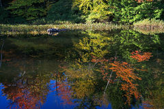 Fall foliage reflected on still water Royalty Free Stock Image