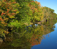 Fall foliage reflected on still water Royalty Free Stock Photos