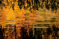 Fall foliage reflecting in pond Stock Photo