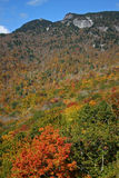 Fall Foliage on the Ridge. Colorful autumn foliage covers the mountainside below granite cliffs Stock Image