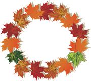 Fall foliage round frame Royalty Free Stock Photos