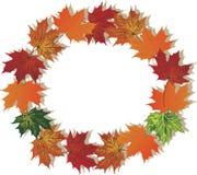 Fall Foliage Round Frame Royalty Free Stock Photos
