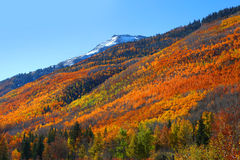 Fall foliage in San Juan mountains Stock Photo